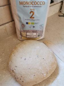 Pane integrale di segale senatore cappelli - Ricette in casa - AlpiBio